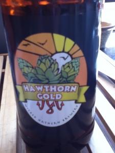 Hawthorn Gold Beer