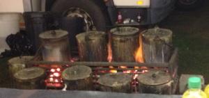 Peas in Pots at Goose Fair